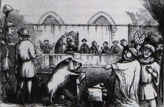 Illustration entitled 'Trial of a Sow and Pigs at Lavegny' taken from The Book of Days (1863) edited by Robert Chambers (Image and caption via the Public Domain Review).